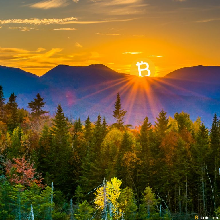 New Hampshire House Subcommittee Approves Bitcoin-for-Taxes Bill